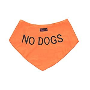 NO DOGS Orange Dog Bandana quality personalised embroidered message neck scarf fashion accessory Prevents accidents by warning others of your dog in advance