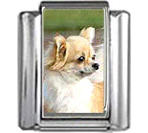 Stylysh Charms Chihuahua Dog Photo Italian 9mm Link DG146 ()