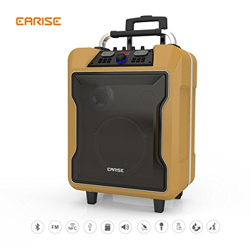 EARISE M60 Audio PA System, Bluetooth Loadspeaker, Soft Metal, 10'' Subwoofer, Wireless Microphone, Remote Control, Mic/Guitar Jack, Telescoping Handle & Wheels by Earise