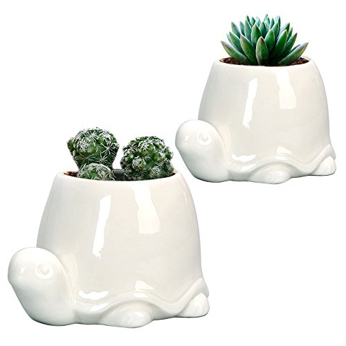 GeLive Tortoise Ceramic Succulent Planter, White Animal Plant Pot, Windowsill Box, Flower Container, Tabletop Decor with Drainage Hole, 2 Pack