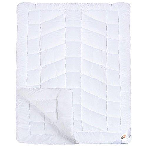 First Class 4-Jahreszeiten Bettdecke | weitere Decken und Größen wählbar | Mikrofaser Steppdecke 155 x 220 cm CelinaTex 0001643