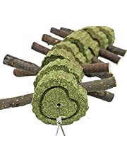 Bunny Chew Toys, Rabbit Toys for Teeth Grinding | Bunny Treats with Organic Apple Wood Sticks and Grass Cakes for Guinea Pig, Chinchilla, Hamster, Gerbil, Parrots, and Other Small Animals