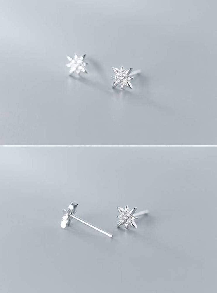 WOZUIMEI Pendientes de Estrella de Luz de Estilo Literario de Plata S925 Pendientes de Diamantes de Temperamento de Dama Dulceplata
