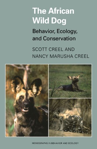 (The African Wild Dog: Behavior, Ecology, and Conservation (Monographs in Behavior and Ecology))