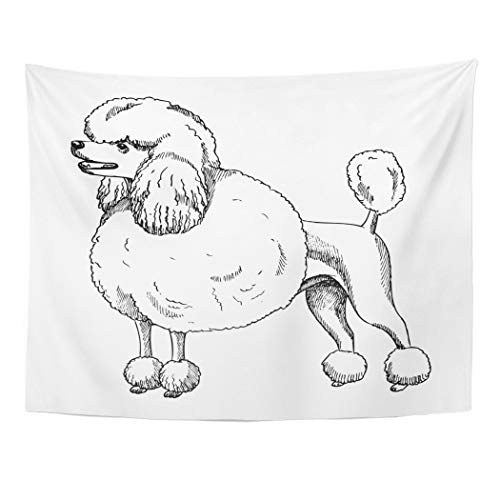 Tarolo Decor Wall Tapestry Animal Poodle Sketch Black Bow Breed Character Cute 60 x 50 Inches Wall Hanging Picnic for Bedroom Living Room Dorm