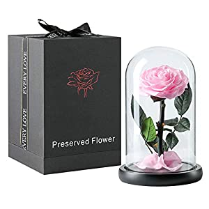 puto Preserved Real Rose Eternal Rose in Glass Dome Gift for Her Valentine's Day Birthday Mother's Day Christmas Anniversary (Pink)