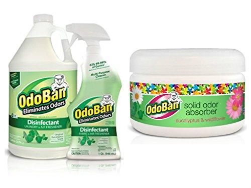 OdoBan Eucalyptus Gallon, Spray Bottle, and Solid Odor Absorber (Pack of 3)