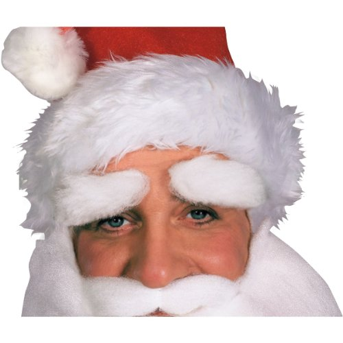 White Eyebrows Costume - Rubie's Men's Santa Eyebrows, White, One Size
