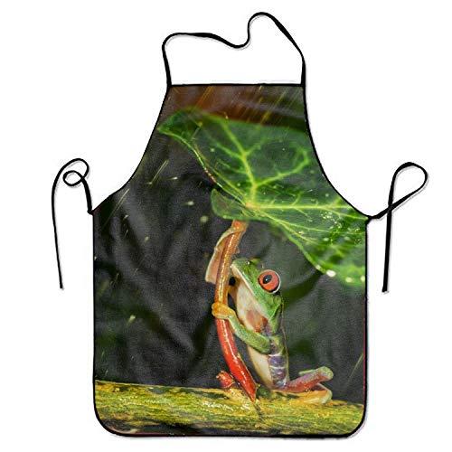 Funny E Mart Doormatscool The Frog Umbrellas Rain Waterproof Durable String Adjustable Easy Care Cooking Apron For Women Men Chef