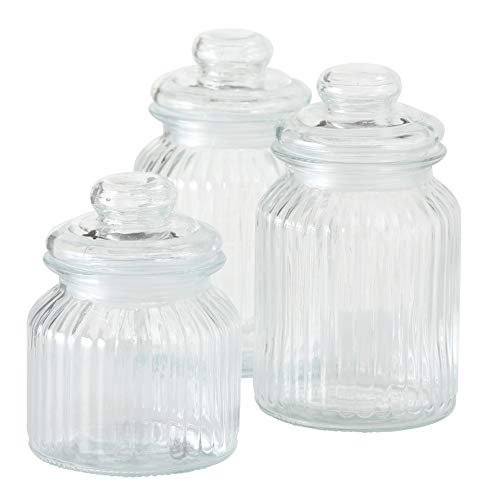 WHW Whole House Worlds Iconic Ribbed and Knob Topped Clear Glass Kitchen Storage Jars, Set of 3, Air Tight Seals, 9, 7 1/2, and 6 Inches Tall