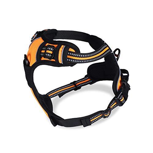 Buy dog no pull harness