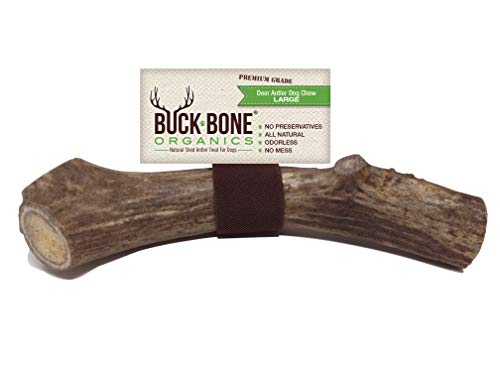 Buck Bone Organics Deer Antler for Dogs, Premium Grade A - Long Lasting Antler Chew, Large 6-8 Made in The USA