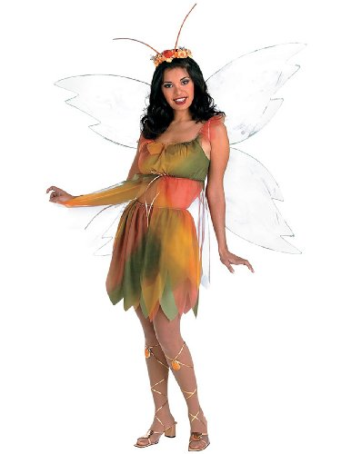 [Felicity The Woodland Fairy Summer Nymph Theatre Costumes Sizes: One Size] (Felicity The Woodland Fairy Costumes)