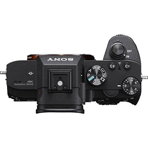 Sony Alpha a7 III Mirrorless Digital Camera (Body Only) with NP-FZ100 Battery, 64gb SDXC 1200x Card, Card Reader, Carrying case, Charger Bundle Kit - International Version
