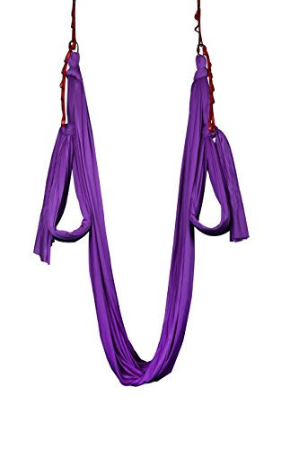 Dasking Deluxe 10 Yards(10m/set) Yoga Swing Aerial Yoga Hammock kit with all Hardware, Fabric & Guide (Dark Purple)