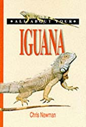 All About Your Iguana (All About Series)