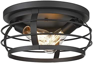 FEMILA Industrial Flush Mount Ceiling Light, 12inch Farmhouse Metal Cage Close to Ceiling Lighting Fixture, Black Finish, 4FD21-F BK