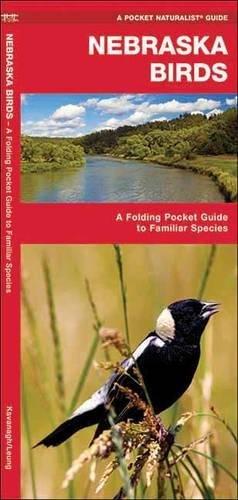 Nebraska Birds: A Folding Pocket Guide to Familiar Species (A Pocket Naturalist Guide) pdf