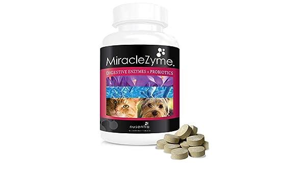 Nusentia Miraclezyme - Los probióticos para los Perros + Enzimas ...