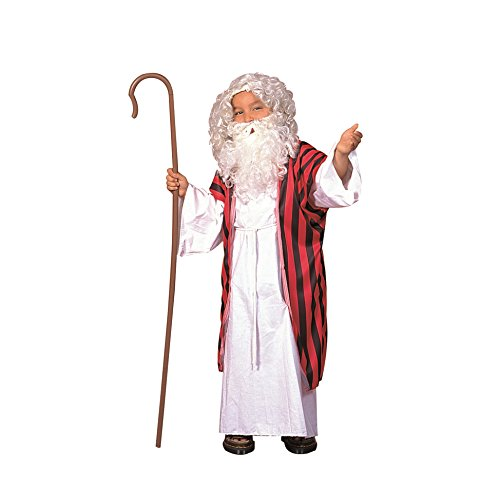 RG Costumes Old Testament Prophet Moses/Noah Costume, Child Small/4-6 -