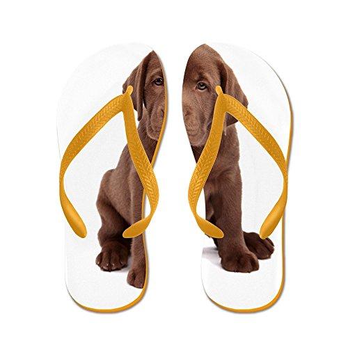 Cafepress Choklad Labrador Valp - Flip Flops, Roliga Rem Sandaler, Strand Sandaler Apelsin