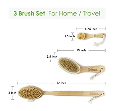 "3 Dry Brushes/Set 100% Natural Boar Bristles Body Brushes & Face Brush-Extra Long Detachable Handle 17"" - Dry Brushing - Back Scrubber - Contour Handle Dry Body Brush -Exfoliate Skin -Reduce Cellulite"