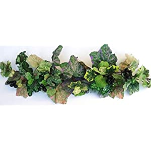 """26"""" Multi-Hued Grape Ivy Swag with Grapes Green Greenery Silk Centerpiece Flowers Plant Home Party Decor WH8011 50"""