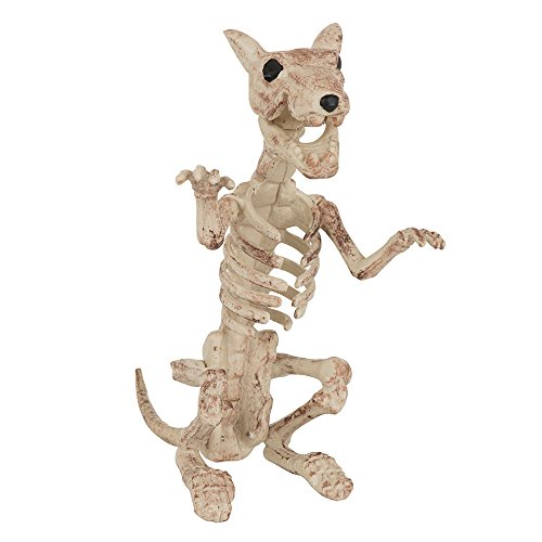 Bristol Novelty HI336 Skeleton Rat, Beige, One Size -
