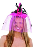 Jacobson Hat Company Women's Witch Hat with Veil Headband