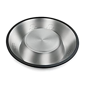 FORE Pet Footprint Bowls (20oz) for Dogs&Cats with Anti-Slip O-Ring Made of Stainless Steel-Set of 2