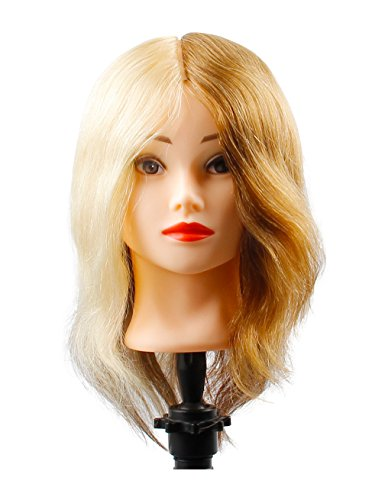 Beauty : Cosmetology Mannequin Head with Human Hair 4 Colors Hair Manikin Head 100 Real Human Hair 4 Sections of Light Brown,Ice Blonde,Grey,Medium Brown