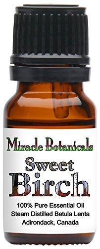 Miracle Botanicals Sweet Birch Essential Oil - 100% Pure Betula Lenta - Therapeutic Grade - 10ml (White Birch Essential Oil)