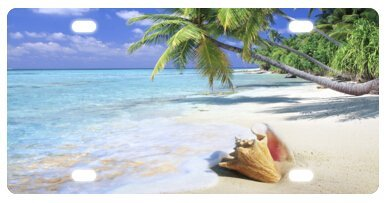 Tropical Paradise Ocean Beach Scene with Palm Trees Novelty License Plate Decorative Front Plate 6