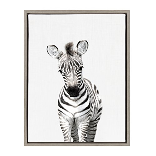 Kate and Laurel - Sylvie Baby Zebra Animal Print Portrait Framed Canvas Wall Art by Amy Peterson, Gray 18 x 24