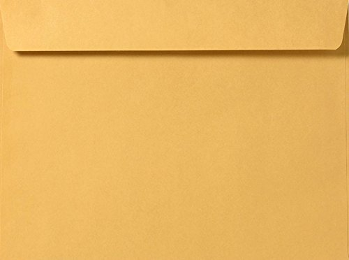 9 1/2 x 12 5/8 Booklet Envelopes - 28lb. Brown Kraft (50 Qty.) Envelopes Store