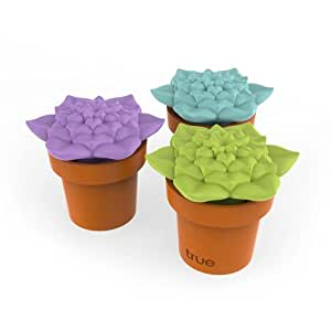 Tipsy Terrarium Stopper and Pourer in Assorted Colors (Set of 3) by TrueZoo