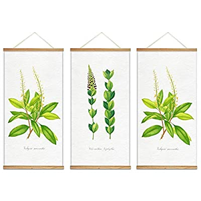 Grand Piece, Hanging Poster with Wood Frames Beautiful Green Plants Home Wall x3 Panels, That's 100% USA Made