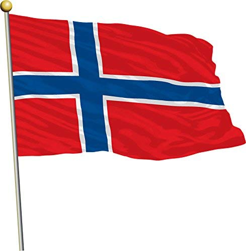 - Venu67Hol Norway Waving Flag Home Decal Vinyl Sticker 12 X 12 inches