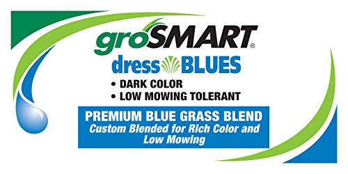 The Turf and Garden Store - Dress Blues Kentucky Bluegrass Blend, Blue Tag Certified, 50 Pounds by dressBLUES (Image #1)