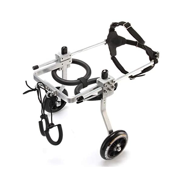 2-Wheel Pet Dog Wheelchair Fully Adjustable Rear Wheelchairs for Handicapped Hind Legs Dogs – 3 Size (Size : M) Click on image for further info.