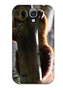 BBJqtms951UYaVw Case Cover Squirrel In Tree Galaxy S4 Protective Case