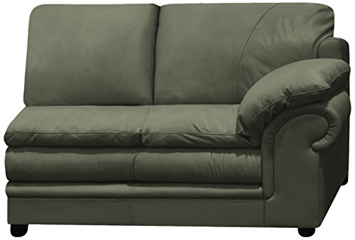 Omnia Leather Santa Barbara Right Arm 2 Cushion Loveseat in Leather, Standard No Nail Head, Navajo Hunter