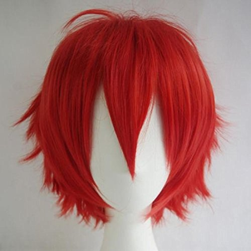 Mens Red Ponytail Wig (Women Mens Short Fluffy Straight Hair Wigs Anime Cosplay Party Dress Costume Wig (Red))