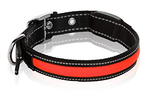 Metal Nylon Collar (Light Up LED Nylon Adjustable Dog Collar With 3 Light Settings - Keep Pet Safe And Visible (Medium, 1 x 19.5 In., Red))