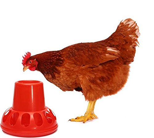 (Saver Chickens Chook Hen Ducks Feeder Waterer Drinker Plastic Red Poultry Geese Rabbits Pigeons Backyard)