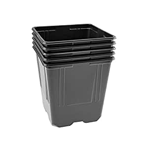 Macetas Set–Por aprox. 11x 11x 11,5cm (LxBxH), con agujeros en la Parte Inferior, de plástico, Negro–Cantidad a elegir