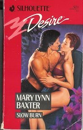 book cover of Slow Burn