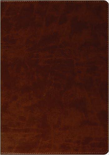 ESV Large Print Bible (TruTone, Brown): ESV Bibles by