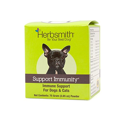 Herbsmith Support Immunity – Canine and Feline Immune Support – Helps Maintain Respiratory Health for Dogs and Cats – Natural Immune System Support – 75g Powder