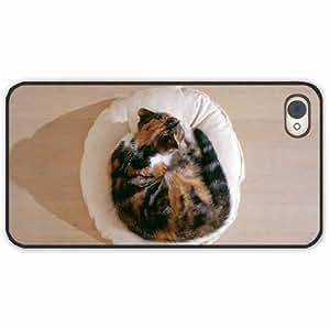 diy zhengiphone 5c Black Hardshell Case kitten lying pillow sleep Black Desin Images Protector Back Cover